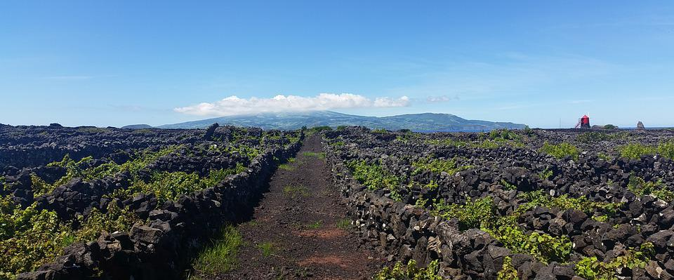 Azores, Low Walls, Vineyards, Mill, Cloud, Panoramic