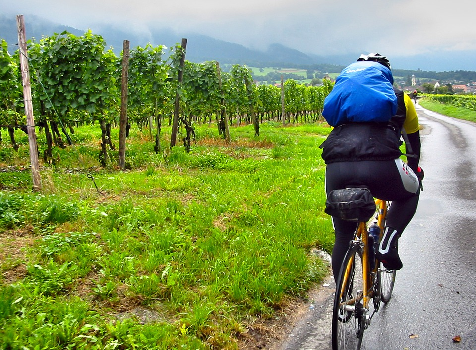 Road Bike, Cyclists, Rain, Vineyards, Backpack