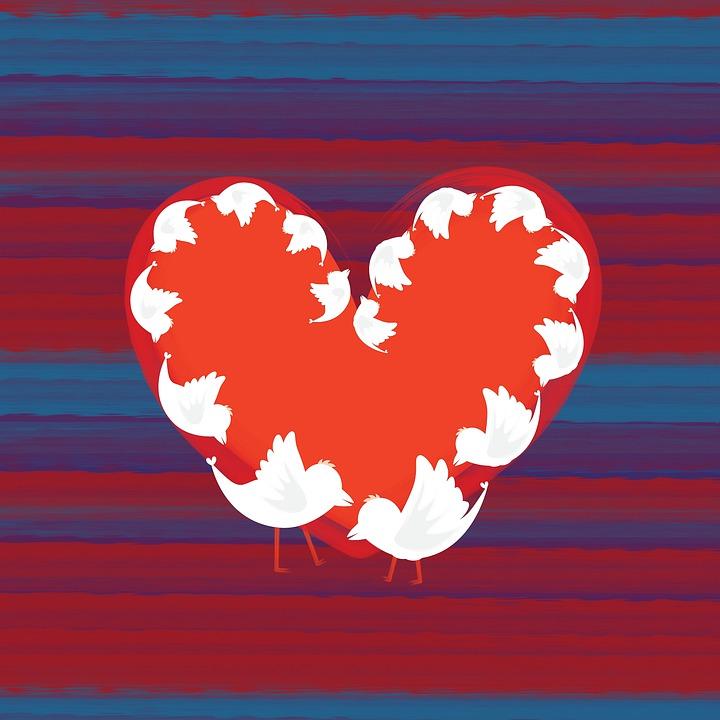 Heart Shape Frame, Viral Wave Connect