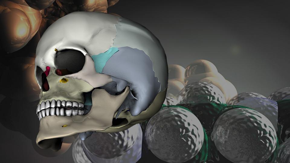 Skull, Head, 3d-model, Rendering, Medical, Virtual