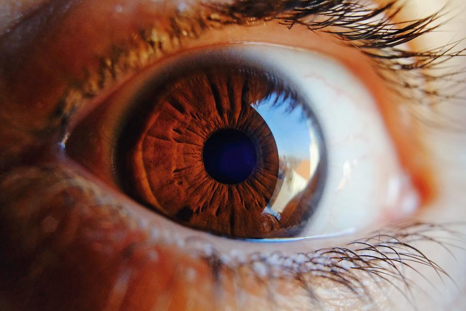 Eye, Macro, Vision, Human, Iris, Woman, Look, Pupil