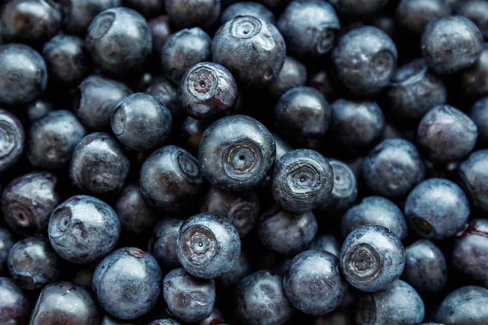 Blueberry, Berry, Fruit, Vitamins, Nutrition, Dessert