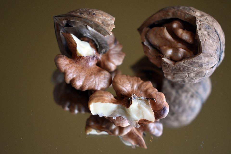 Walnut, Fruit, Shell, Hard, Vitamins, Tree, Nuts