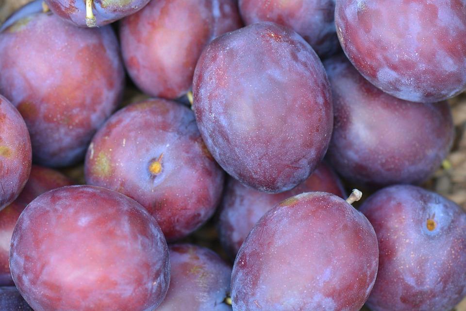 Plums, Fruit, Vitamins, Purple