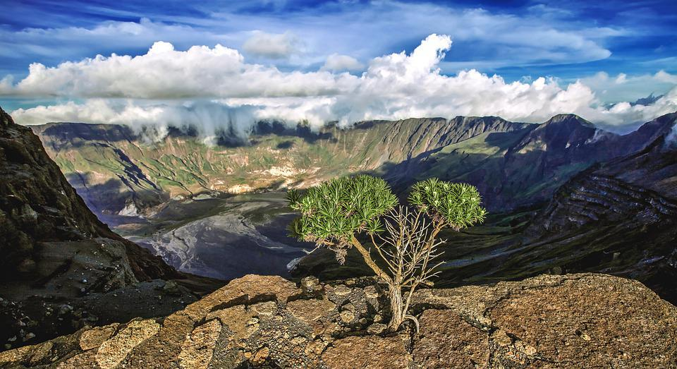 Landscape, Mountain, Volcano, Tambora Mountain