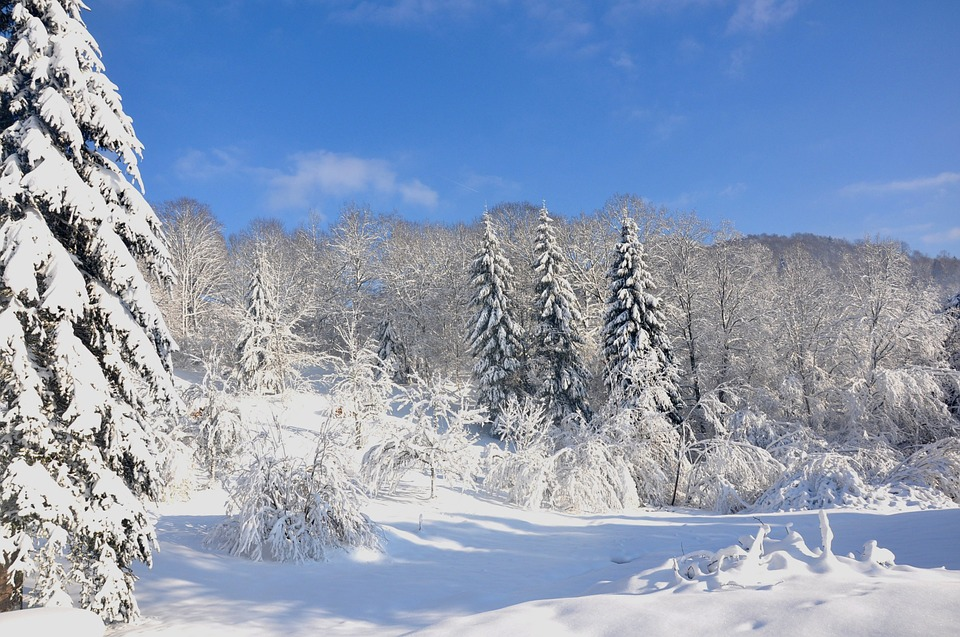 Vosges, Winter, Snow