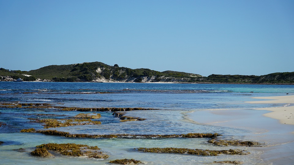 Coast, Rottnest, Australia, Beach, Island, Bay, Sea, Wa