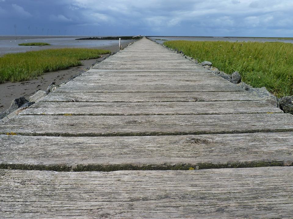 North Sea, Web, Wadden Sea, Ebb, Boards, Lonely