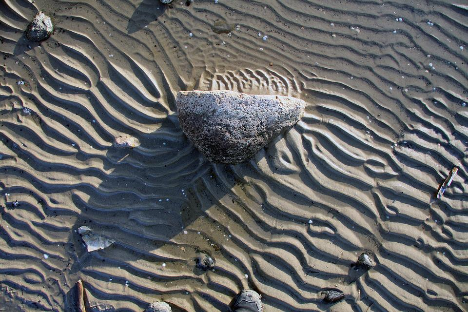 Shell, Watts, Wadden Sea, North Sea, Wavy Lines, Lines
