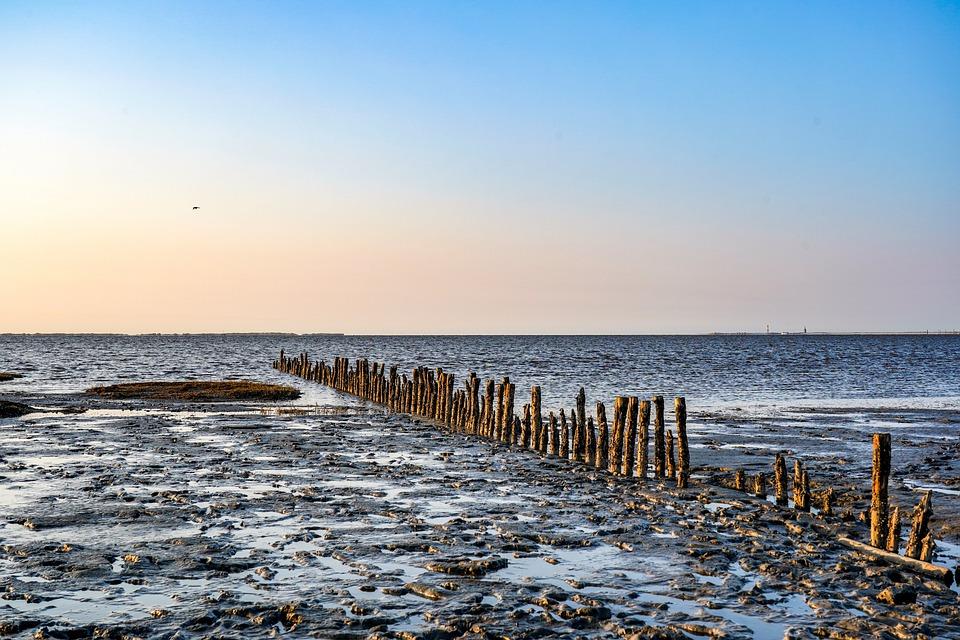 Watts, Wadden Sea, Sandbar, North Sea, Ebb, Sea, Nature
