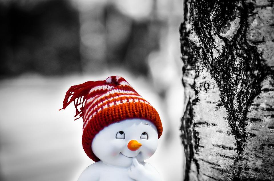 Snow Man, Smile, Consider, Wag, Prank, Plan, Deceitful