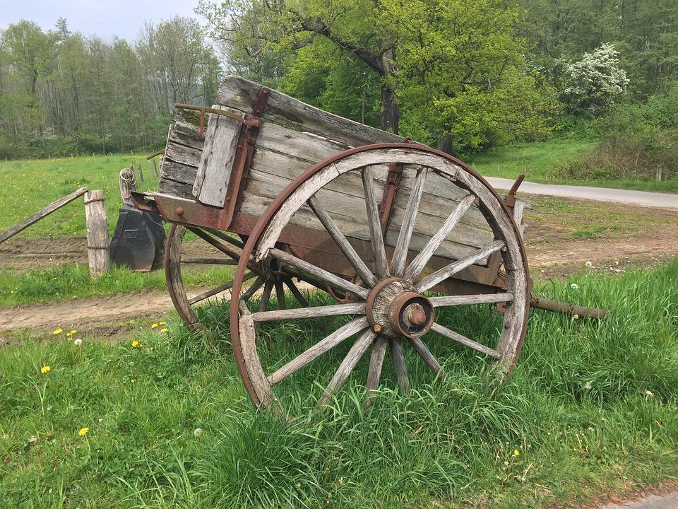 Coach, Horse Drawn Carriage, Wagon, Antique, Team