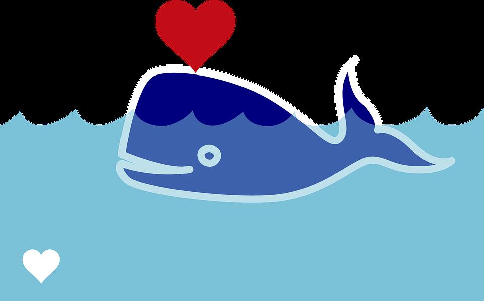 Wal, Sperm Whale, Blast, Heart, Valentine's Day