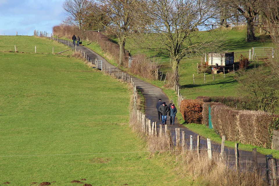 Walk, Sunshine, Personal, Landscape, Away, Lane