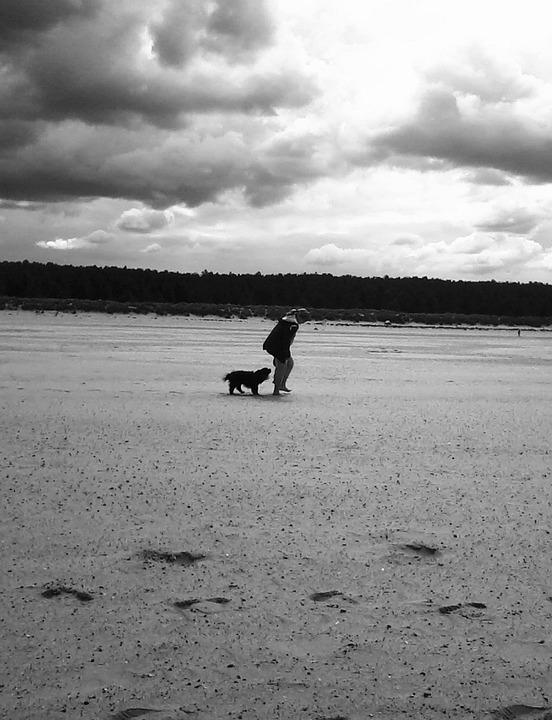 Dog, Girl, Beach, Walk, Sand, Sky, Cloud