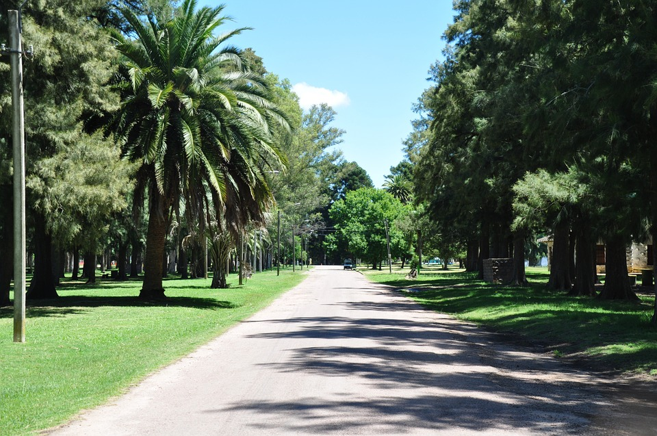 Park, Uruguay, Recreation, Walk