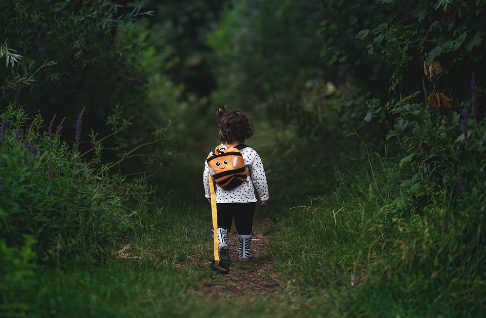 Girl, Path, Walking, Child, Kid, Forest, Little Girl