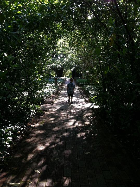 Boy, Child, Garden, Walkway, Bricks, Brick Walkway