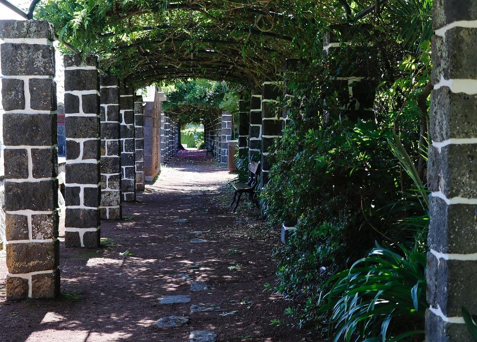 Alley, Old, Shady, Stone, Green, Wall, Garden, Path