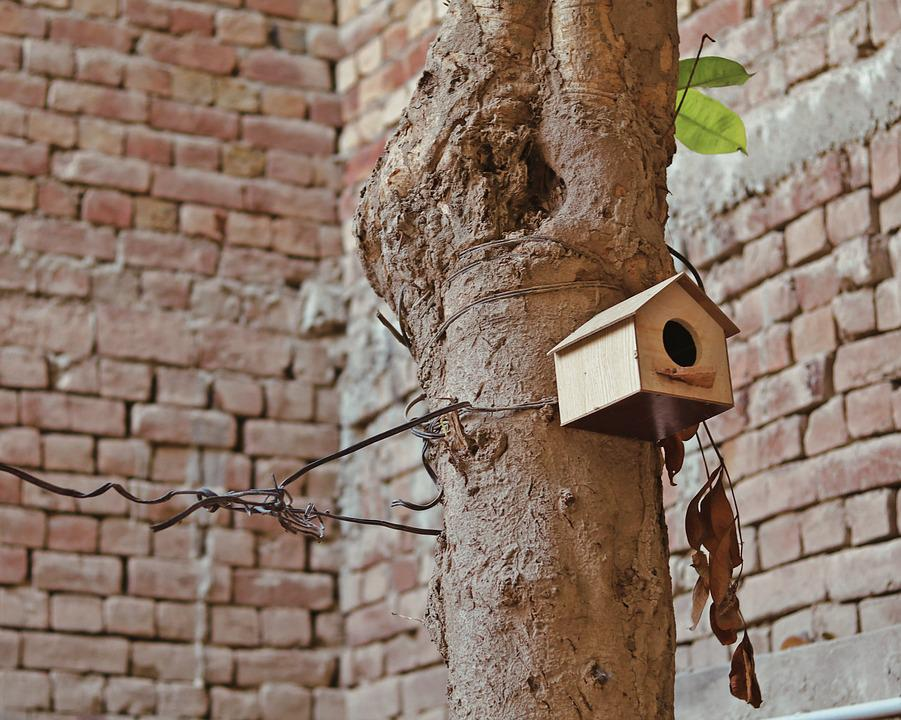 Old, Wall, Architecture, Protection, Wood, Birdhouse