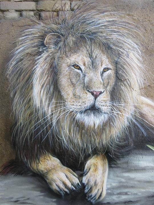 Lion, Wall Art, Wall, Zoo, Berlin, Animal, Nature
