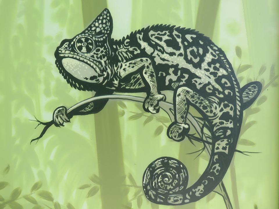 Kamelion, Wall Art, Wall, Zoo, Berlin, Animal, Nature