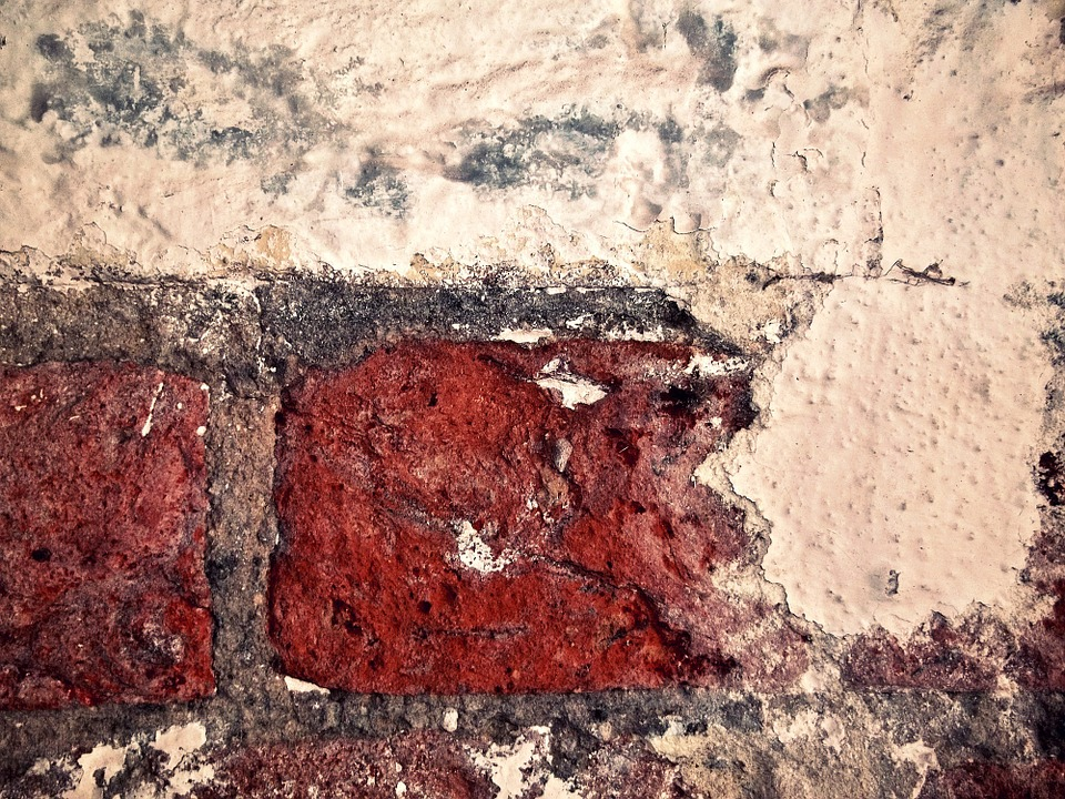 Wall, Brick, Bricks, Red, Masonry, Facade, Architecture