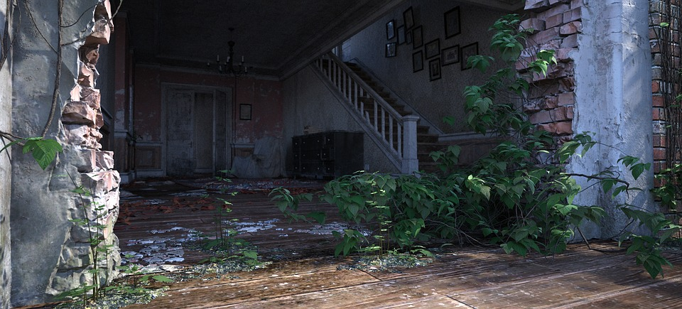 House, Plant, Green, Building, Flowers, Wall, Haunting