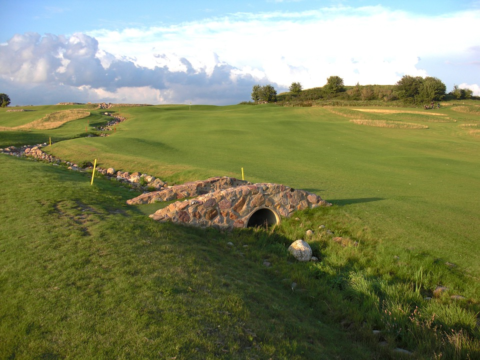 Stone, Wall, Forest, Golf, Course, Grass, Turf, Hole