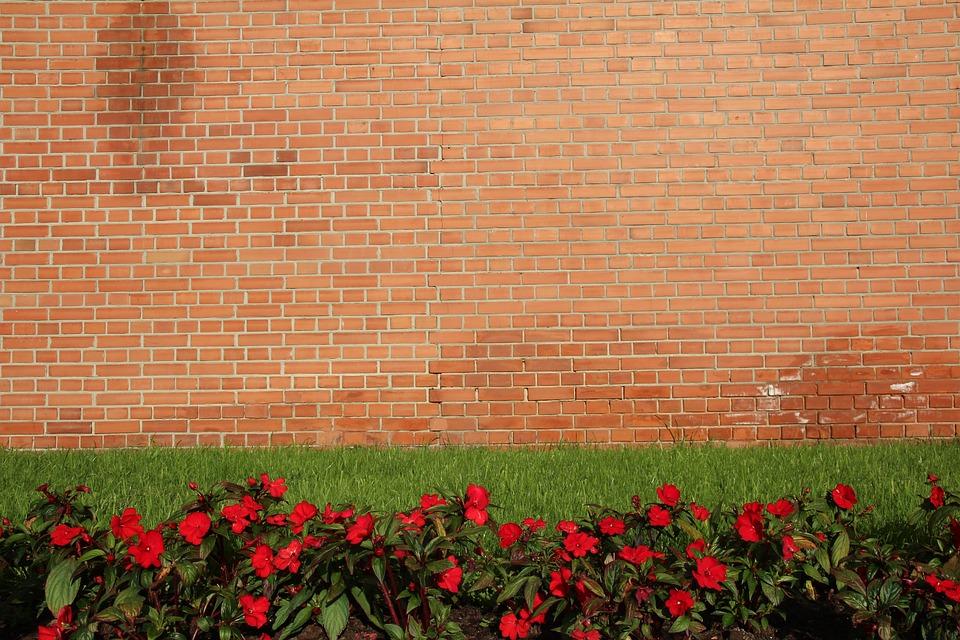Background, Wall, Meadow, Wallpaper