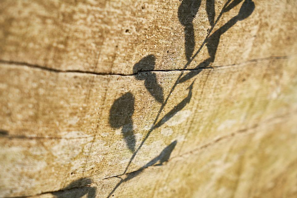 Wood-fibre Boards, Texture, Wood, Surface, Wall, Old