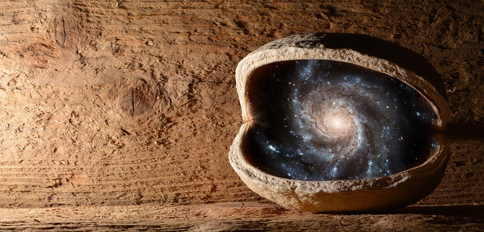 Nut, Walnut, Universe, The Universe In The Nut Shell