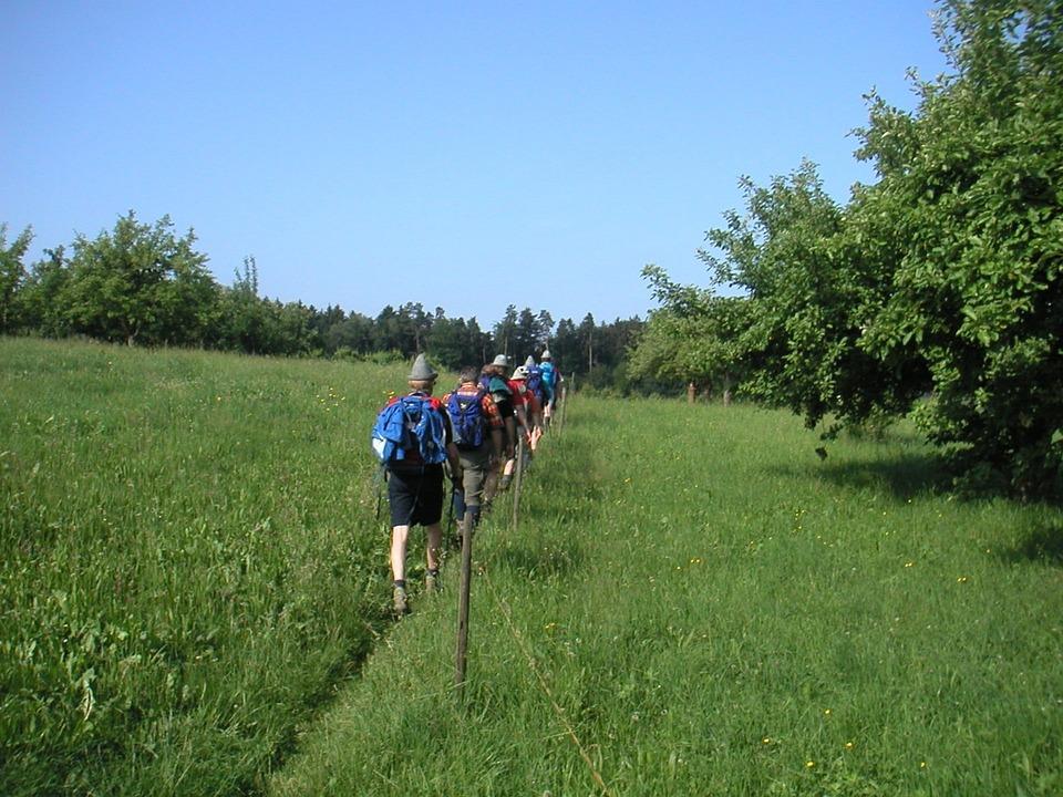 Single File, Wanderer, Meadow Path, Frisch, Fromm