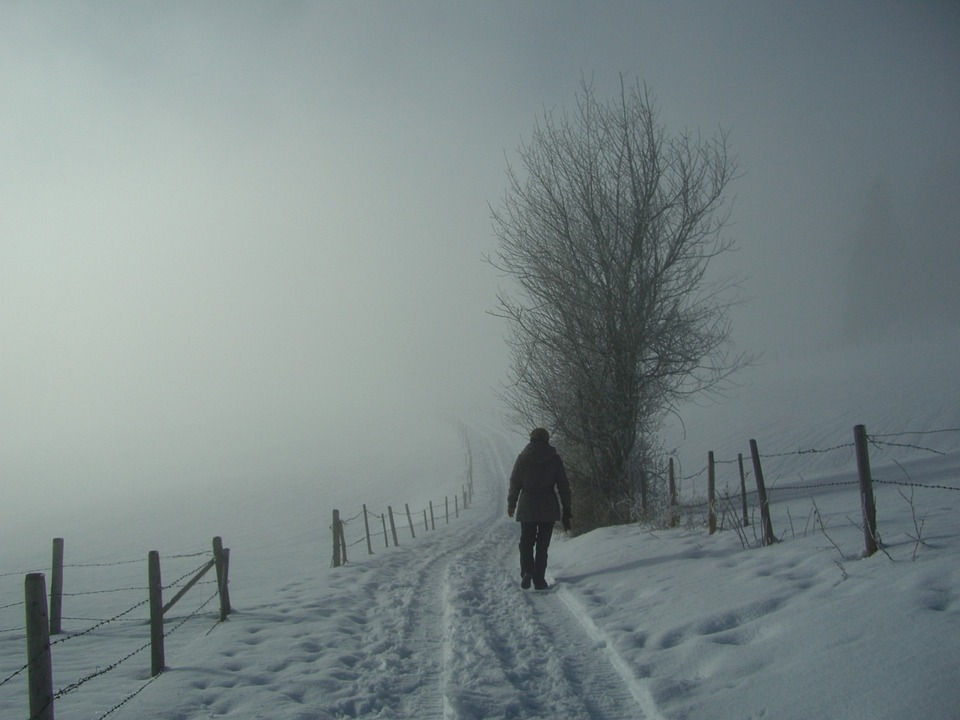 Fog, Wanderer, Winter, Snow, White, Grey, Snow Lane