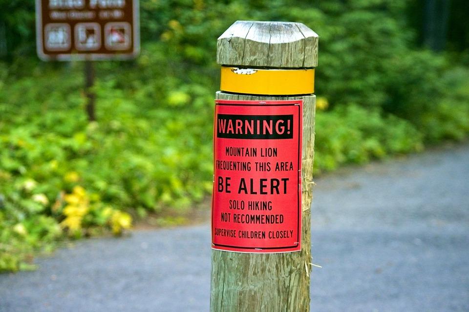 Mountain Lion Warning, Sign, Warning, Alert, Danger