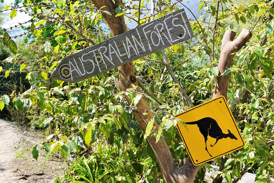 Australia, Shield, Nature, Park, Street Sign, Warning