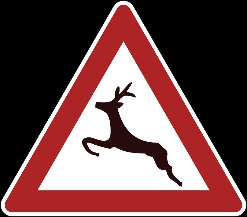 Deer Crossing, Danger, Warning, Road Sign, Traffic