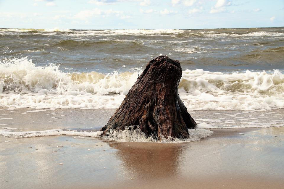 Sea, Washed Up, Strain, Wood, Stump, Waves, Bank, Sand