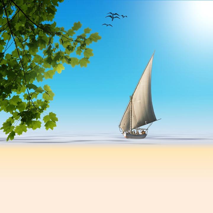 Sailing Boat, Plant, Water, Sea, Sand, Beach, Vacations