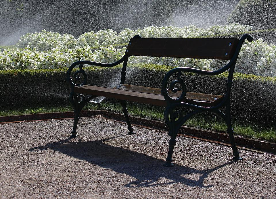 Bench, Park, Water