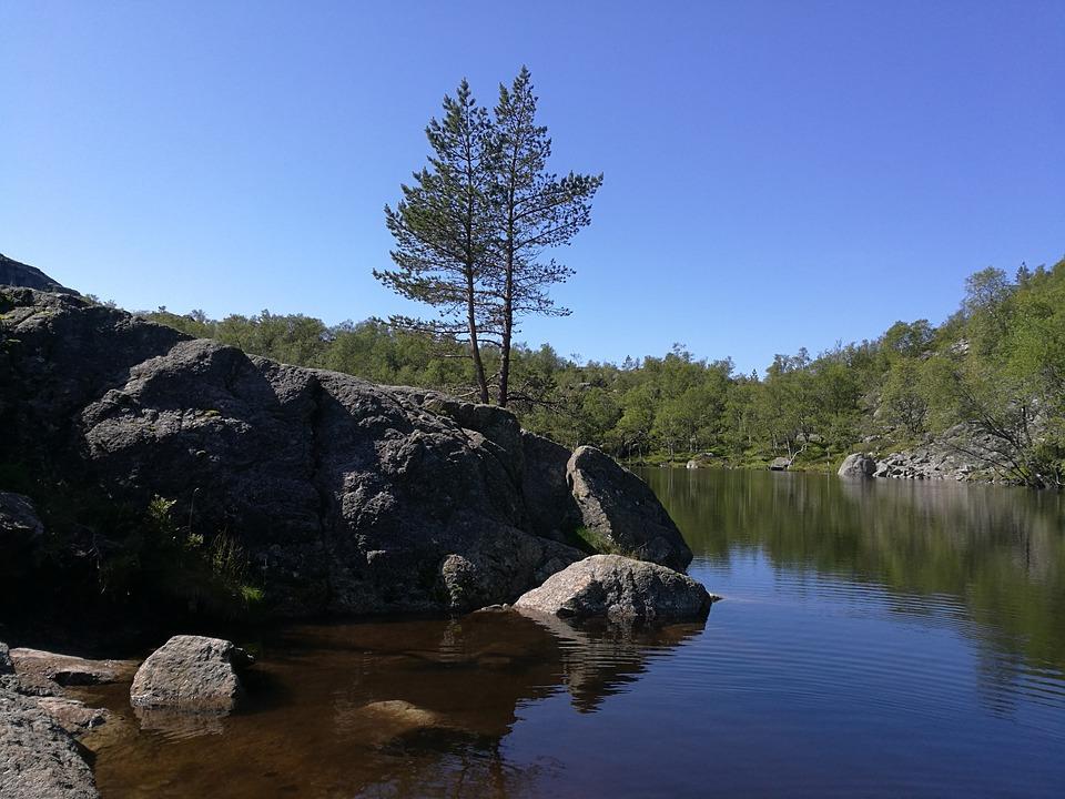 Norway, Hiking, Tree, Bergsee, Lake, Water, Summer, Sky