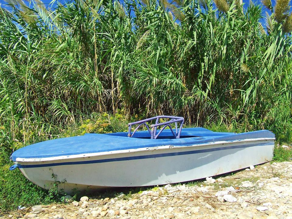 Boat, Blue, Rowing, Water, Summer, Vessel, Nautical