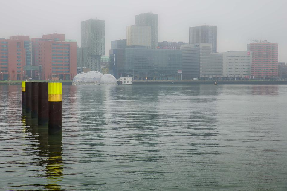 Rotterdam, Rijnhaven, Water, Mooring, Buildings, View