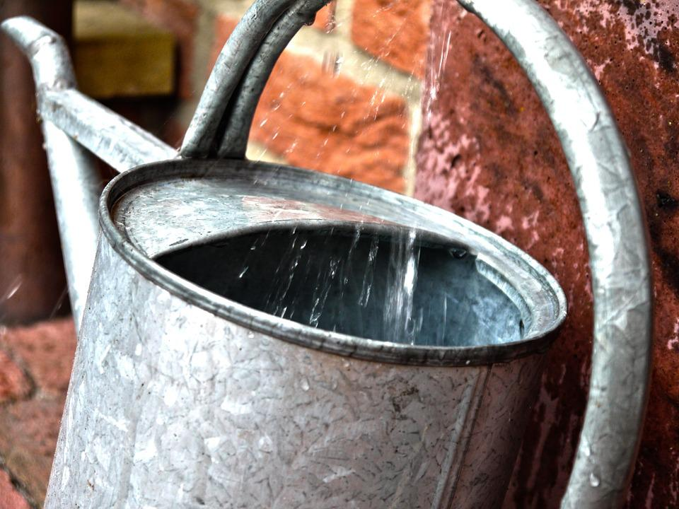 Watering Can, Pot, Casting, Gardening, Water