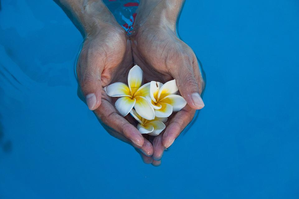 Collection Of Hand, Flowers, Water, Break, Stability