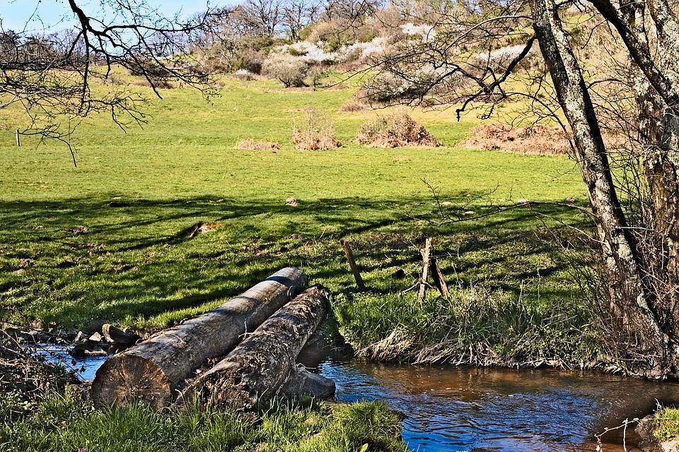 Narvau Gorge, Morvan, Nièvre, Water Courses, River