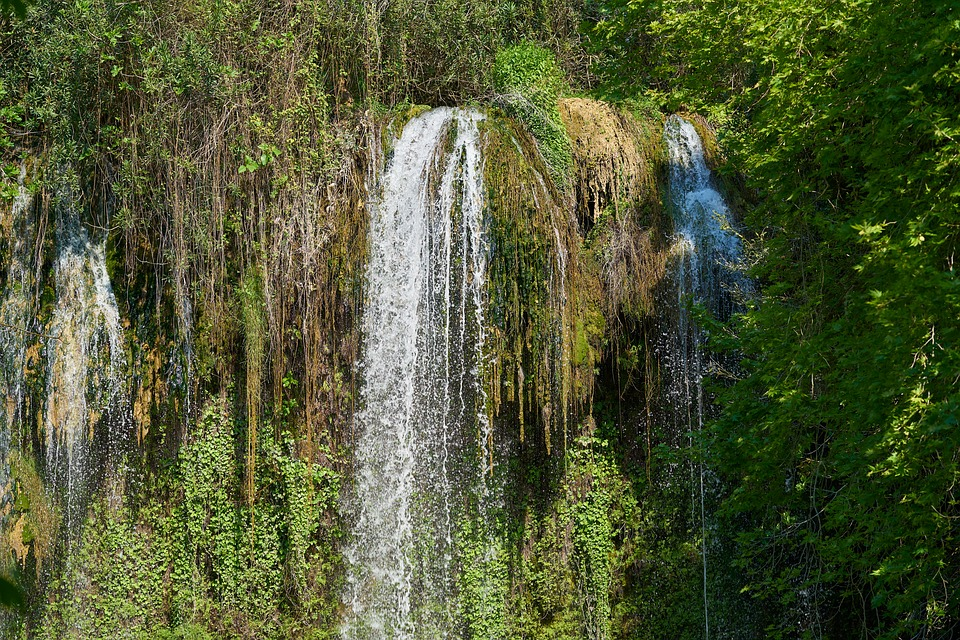 Waterfall, Water, Nature, Forest, Cascade, Dd, River