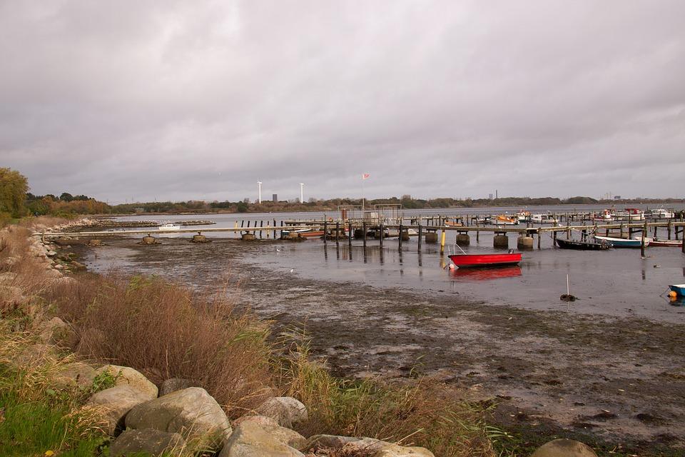 Low Tide, Ebbe, Shore, Tang, Stone, Bay, Water, Sea