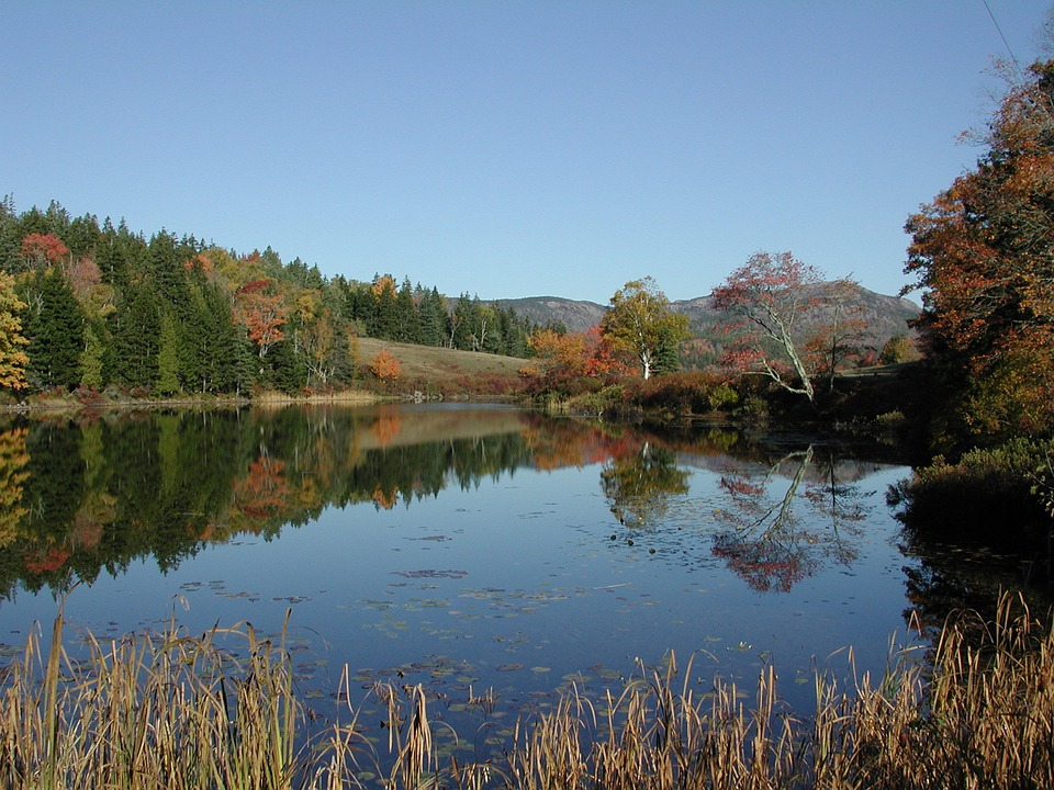 New England, Water, Reflection, Trees, Fall Colors