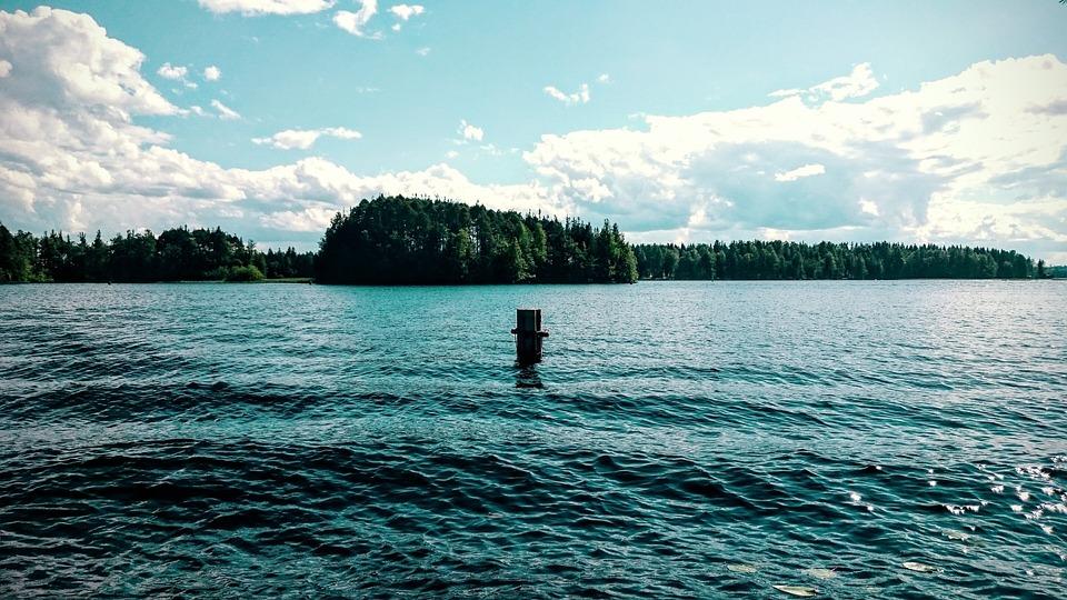 Summer, Lake, Beach, Trees, Water, Finnish